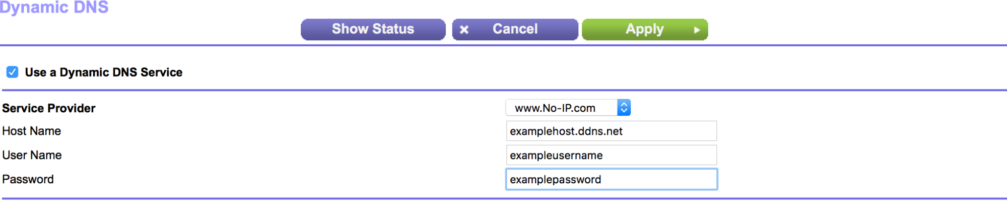 Setup and Configure Dynamic DNS in a Netgear Router
